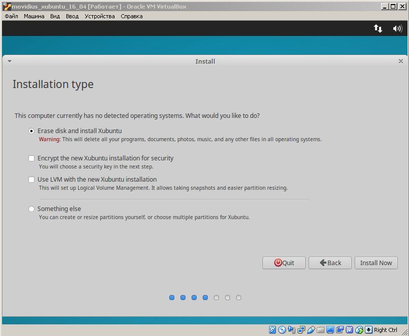 Xubuntu select install type